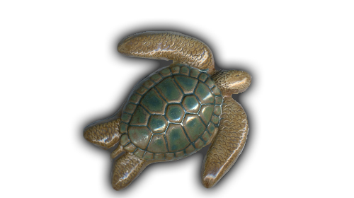 small sea turtle